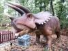 dinosaur_08