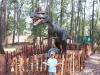 dinosaur_19
